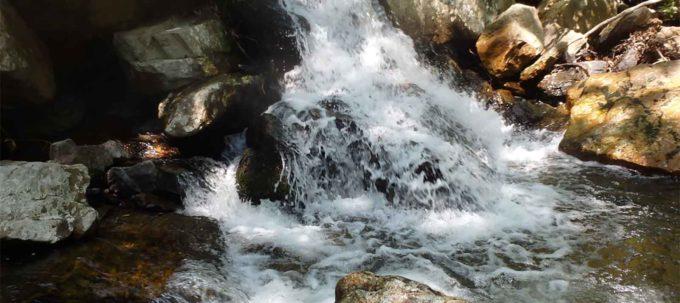 Big Hunting Creek, MD | Bob Irvin