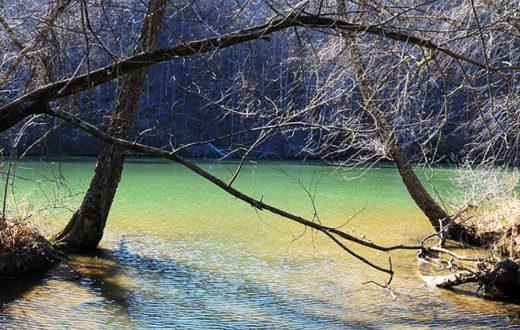 Black Warrior River, AL | Nelson Brooke