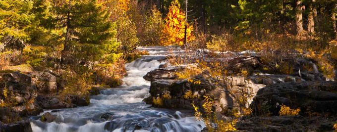 Rogue River shot by John Bruckman