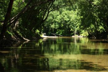 Enjoying the scenery on the Patapsco River downstream of Bloede Dam | Jessie Thomas-Blate