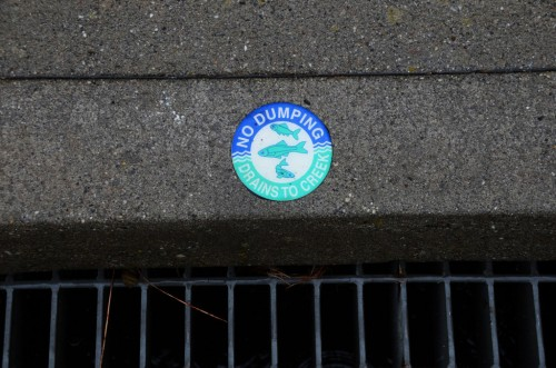 Stormdrains often pour straight into creeks and streams increasing flood risk downstream | Maxwell Odland