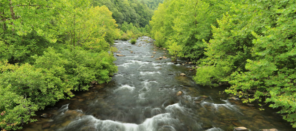 Cheoah River in Nanthahala National Forest, NC