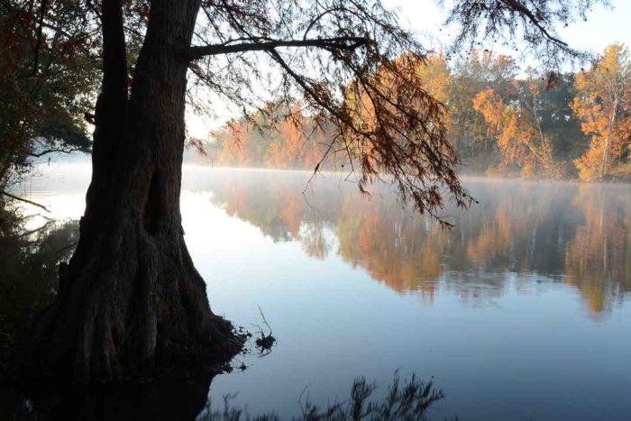 Flint River | GA River Network