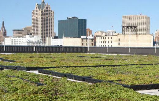 MMSD Green Roof | MMSD