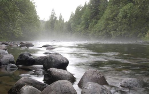 Molalla River | Jeff Clark [BLM]