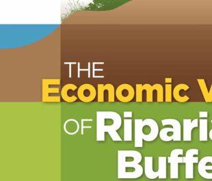 Riparian buffers report cover