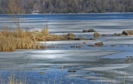 St. Lawrence River | Napaneegal [Flickr CC]