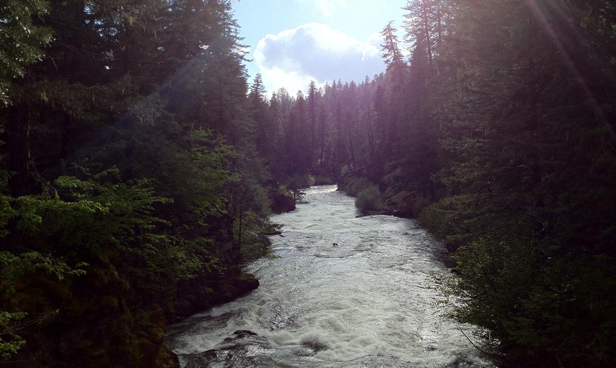 Rogue River | Erica Minton