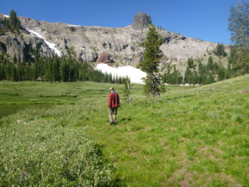 AR's Max Odland conducts a meadow assessment in Granite Chief Wilderness in the American River watershed.   Bonnie Ricord