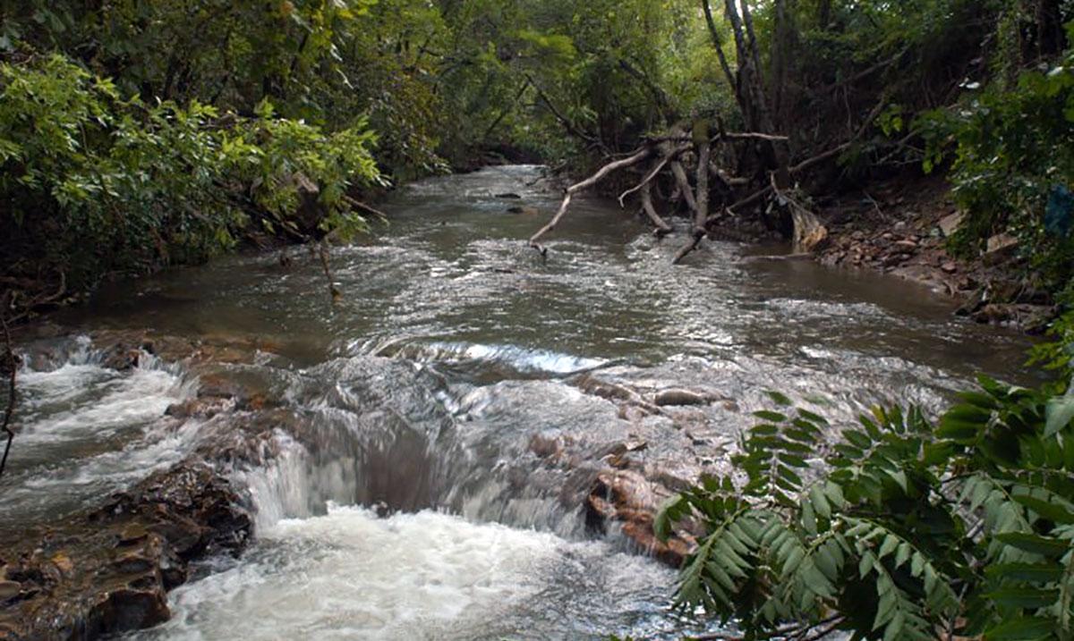 Avondale Creek | Black Warrior Riverkeeper
