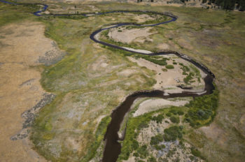 Oblique view looking North at a section of river that will receive streambank stabilization treatments. | Daniel Nylen