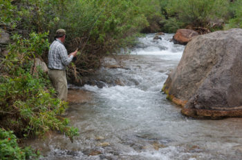 Fishing on Stone Creek.