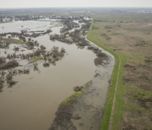 Aerial drone images capture flooding dynamics along the San Joaquin River.   Daniel Nylen