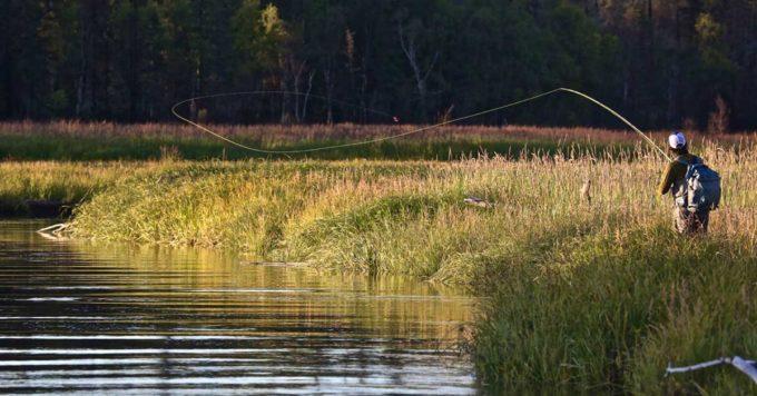 Chuitna River, AK | Dave McCoy