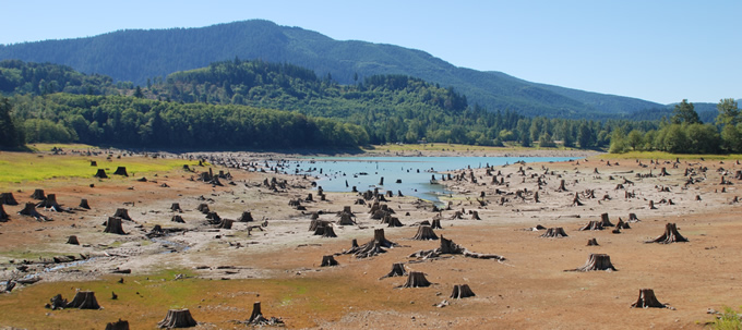Alder Reservoir on the Nisqually River during a period of low water. This reservoir is associated with Tacoma Power's Nisqually Hydroelectric Project (FERC P-1862). | Thomas O'Keefe/Hydropower Reform Coalition
