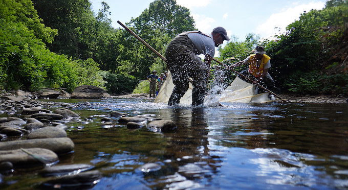 U.S. Fish and Wildlife scientists run a seine through a remnant pool to catch fish at a decrepit dam on the Cane River, in North Carolina. | Photo: U.S. Fish and Wildlife Service Southeast Region