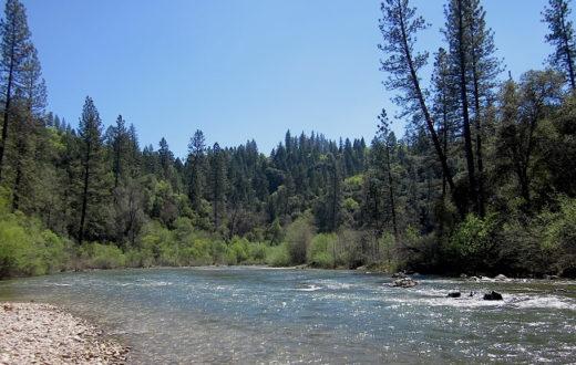 Bear River in Colfax, CA   Photo: Stephanie Curin