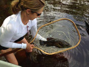 Fishing the Menominee River.   Photo: Charlie Piette