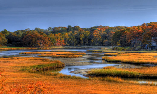 Fall over the salt march in West Falmouth, MA. | Photo: slack12 (Flickr)
