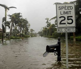 Flooding in Naples, Florida following Hurricane Irma   Photo by David Goldman/AP