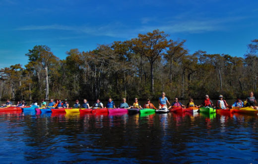 Waccamaw Cleanup | Laila Johnston