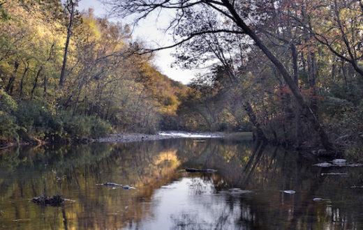 Arkansas' Buffalo River | Angela Peace