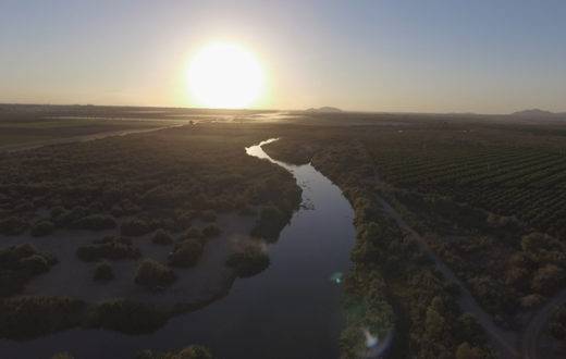 Colorado River in Yuma, AZ | Sinjin Eberle