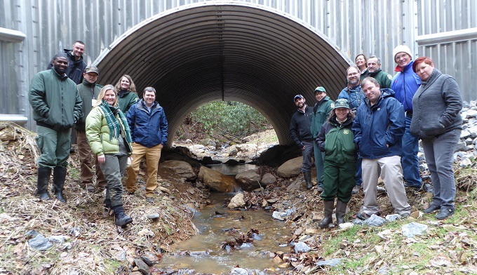 Briar Creek restoration, TN.   Credit: The Nature Conservancy