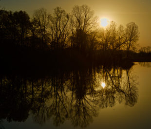 Big Sunflower River at sunrise.   Stephen Kirkpatrick