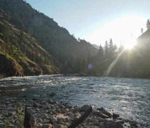 South Fork Salmon River   Photo: Daniel Patrinellis