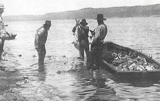 Lake Pepin circa. 1894