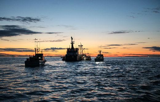 Fishing boats in Bristol Bay.   Kai Raymond