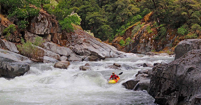 Kayaking the Moke. | Friends of the River