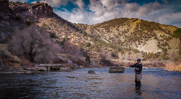 Fishing on the Animas River   Photo by Sinjin Eberle