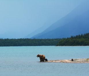 Naknek Lake   Photo by Paxson Woelber