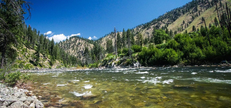 South Fork Salmon River   Photo by Daniel Patrinellis