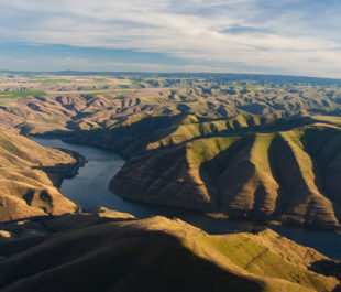 Snake River | Alison Meyer Photography