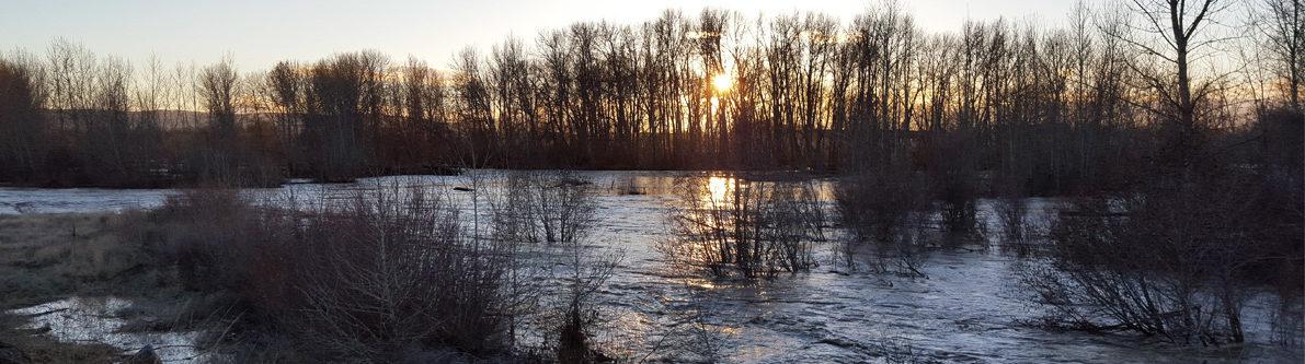 Floodplain restoration efforts by Yakima County on the Yakima River | Jonathan Loos