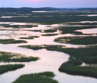 Bald Head Island, NC | Photo by IOFOTO
