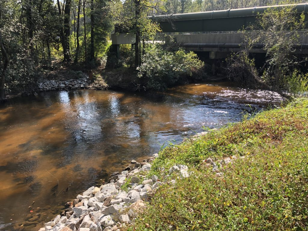 Congaree Creek four months after removal | Photo by Gerrit Jobsis
