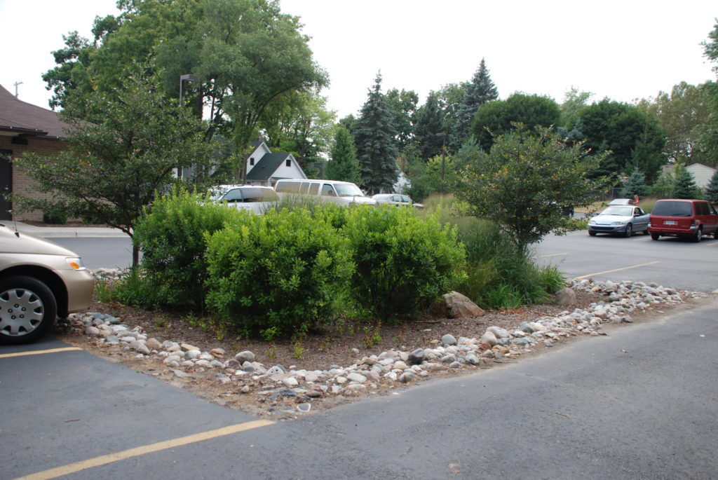 A parking lot rain garden in Lansing, MI | Photo by Patricia Pennell