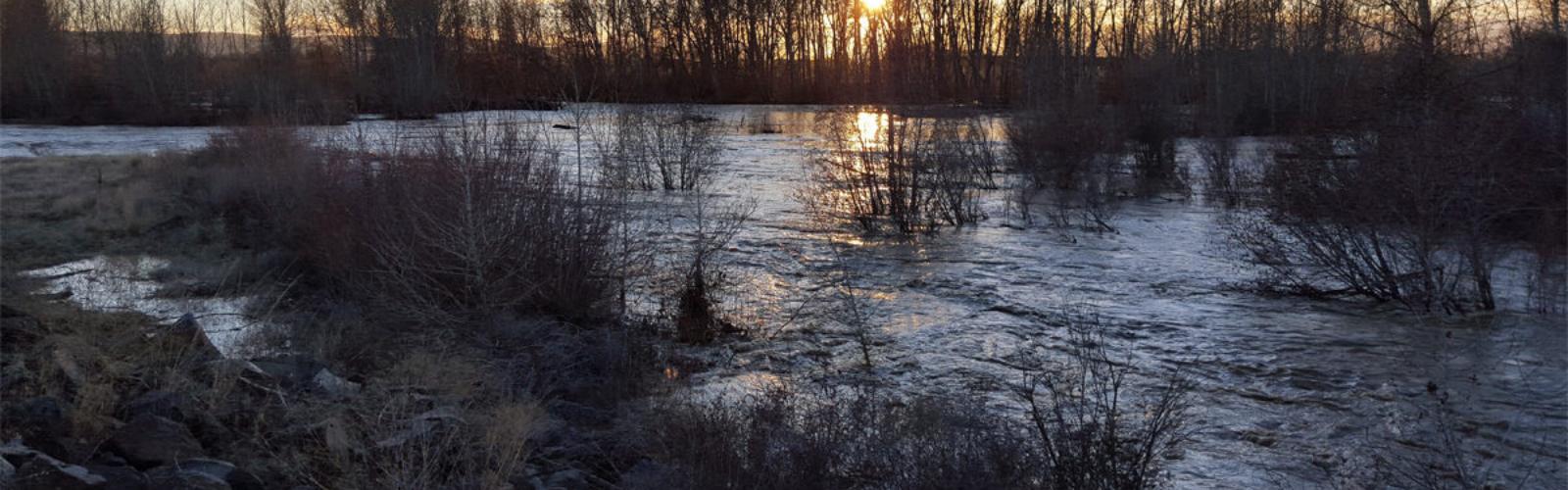 Floodplain restoration efforts by Yakima County on the Yakima River   Jonathan Loos