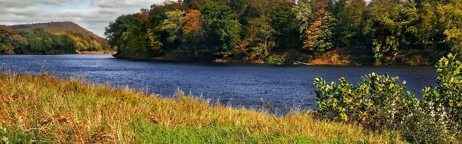 Delaware River Floodplain   Photo by Nicholas Tonelli