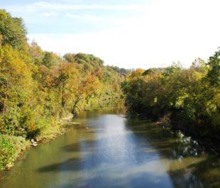 Harpeth River in Kingston Springs, TN   Photo by Dozier Donald