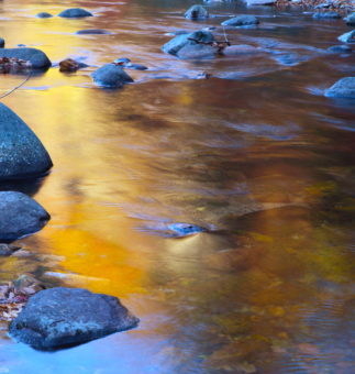 Fighting For Rivers Means Fighting For Justice Environmental Justice