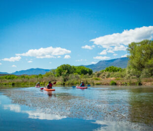 Verde River, AZ | Photo by Sinjin Eberle
