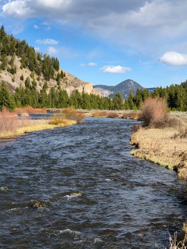 Gallatin River | Photo by Scott Bosse