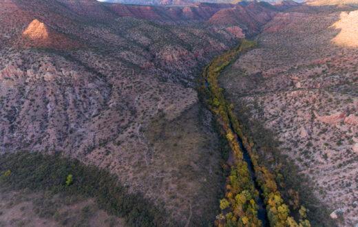 Sycamore Creek, AZ | Photo by Justin Clifton