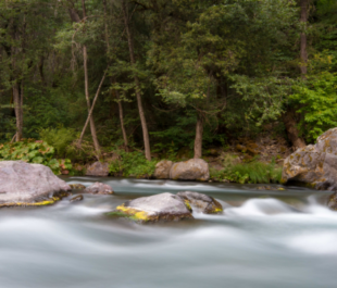 McCloud River, CA | Photo by Lourens Botha