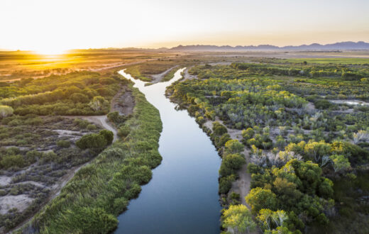 Colorado River, AZ   Photo by Fred Phillips